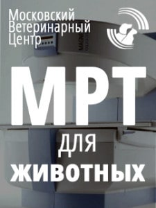 МРТ_banner