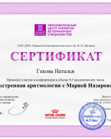 Гекова 4