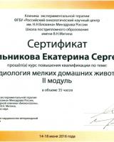 Котельникова 2