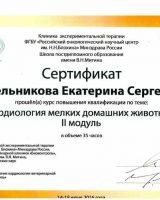 Kotelnikova_gor_1-e1507592153852