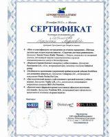 Labyintseva_1