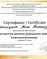 Михалицина 2