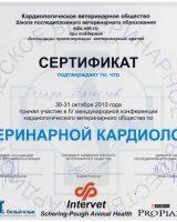 Порада сертификаты-1