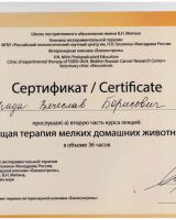Порада сертификаты-8