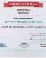 Щугорев диплом+сертификт-2