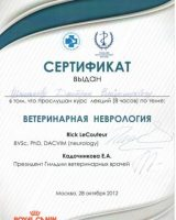 сертификаты_Страница_24