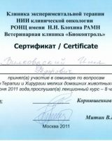 сертификаты_Страница_33