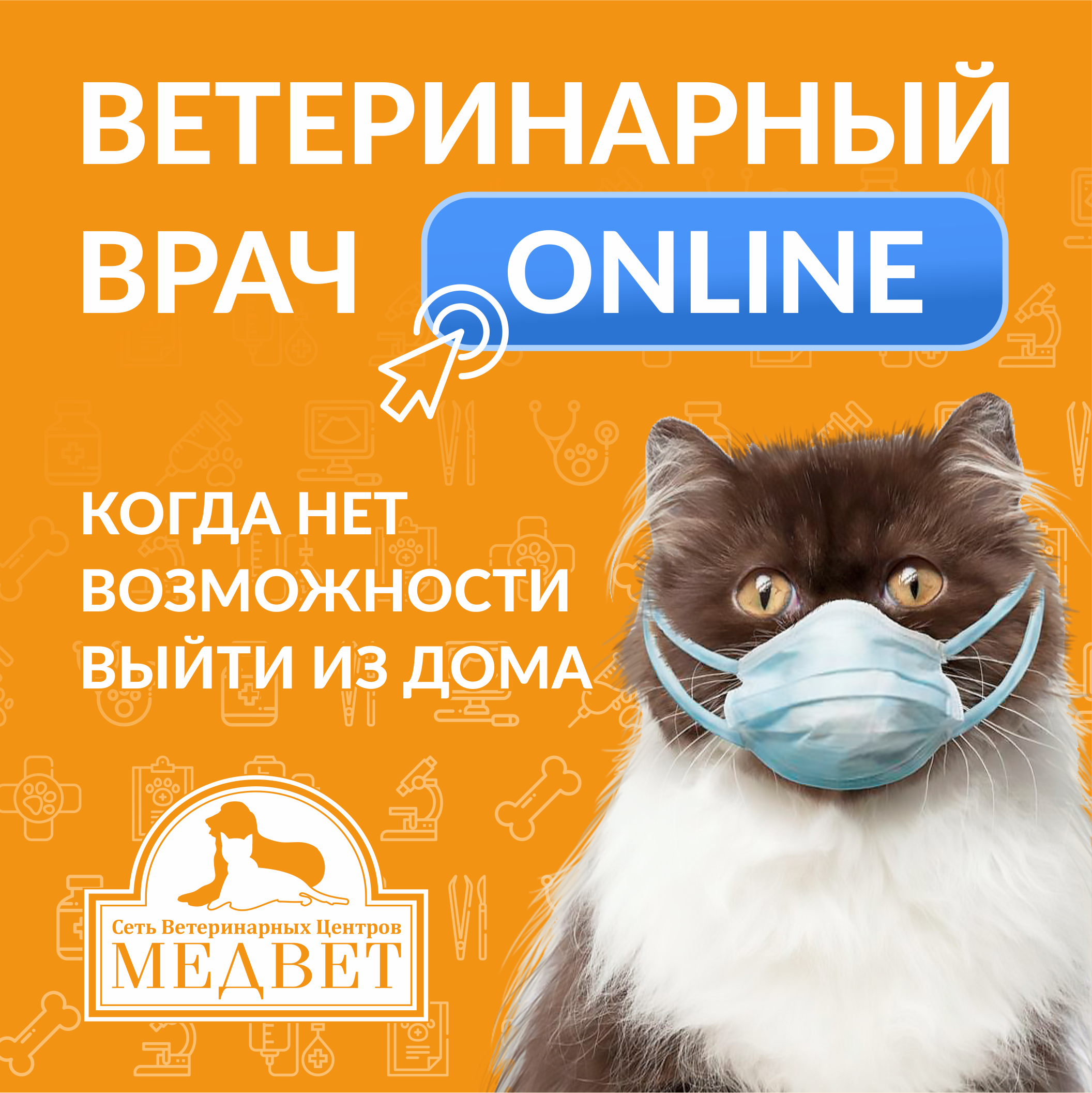 «Он-лайн консультация» ветеринарного врача