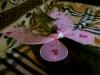 Бородянская Екатерина (кот Дима)