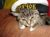Попов Максим (кошка Муся)