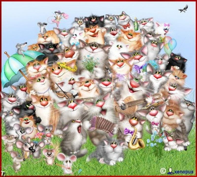 http://med-vet.ru/wp-content/uploads/2014/05/9wa8m-xenopus_cats_14.jpg