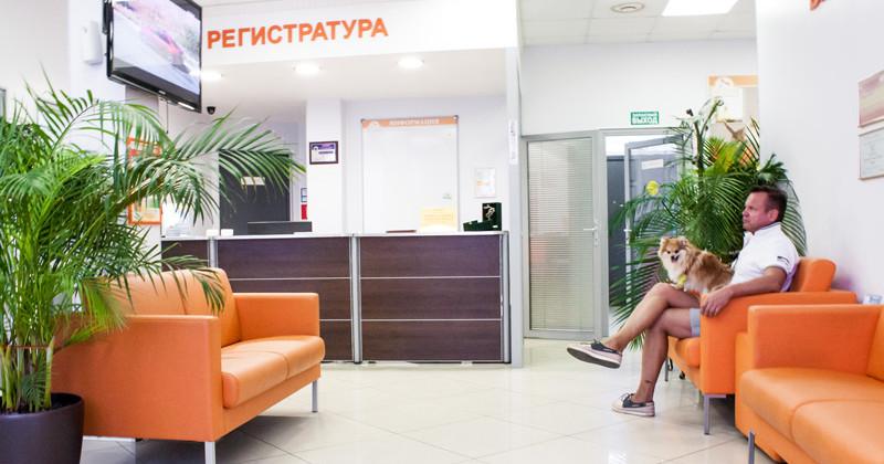 Городская стоматологическая поликлиника г владимир