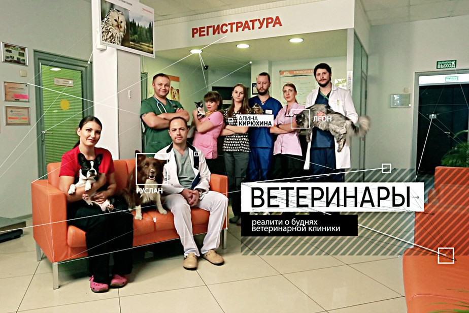 шапка_ВЕТЕРИНАРЫ_